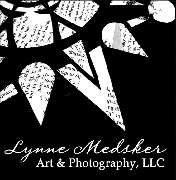 Logo, Lynne Medsker Art & Photography