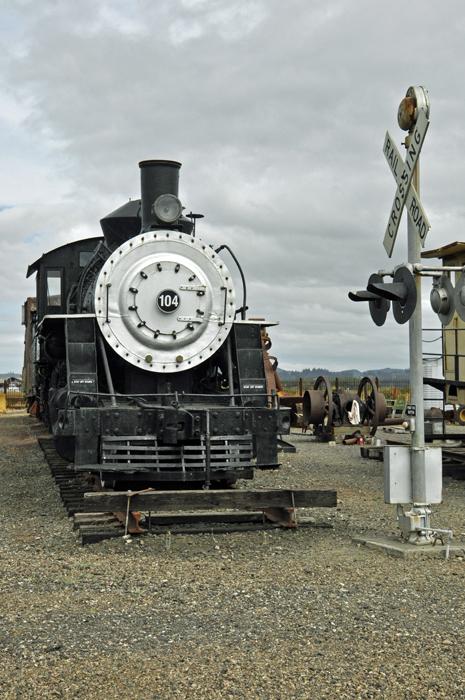 train © lynne medsker