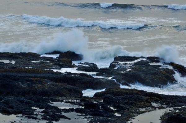 rocky coast © lynne medsker