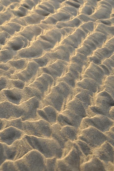 """""""sandscape"""" on the beach © lynne medsker"""
