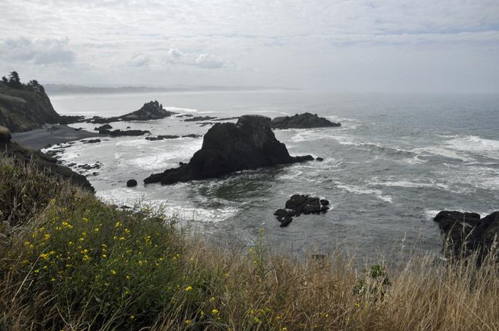 rocky shore @ lynne Medsker