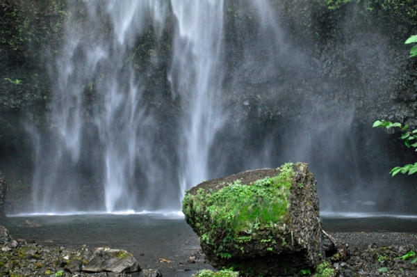 oregon waterfalls © lynne medsker