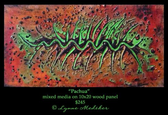 pachua © lynne medsker