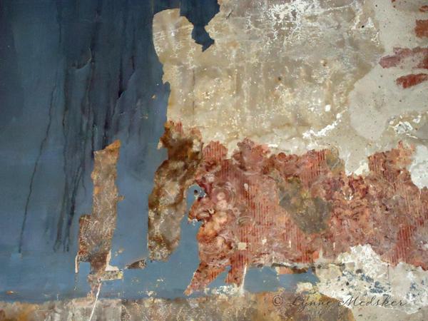 texture image by Lynne Medsker