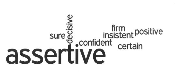 2014 Assertive